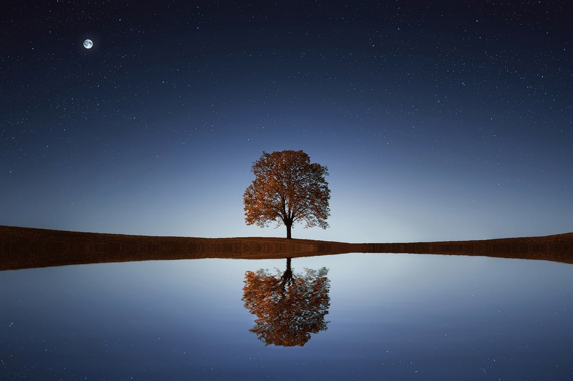 learn to reflect and evaluate