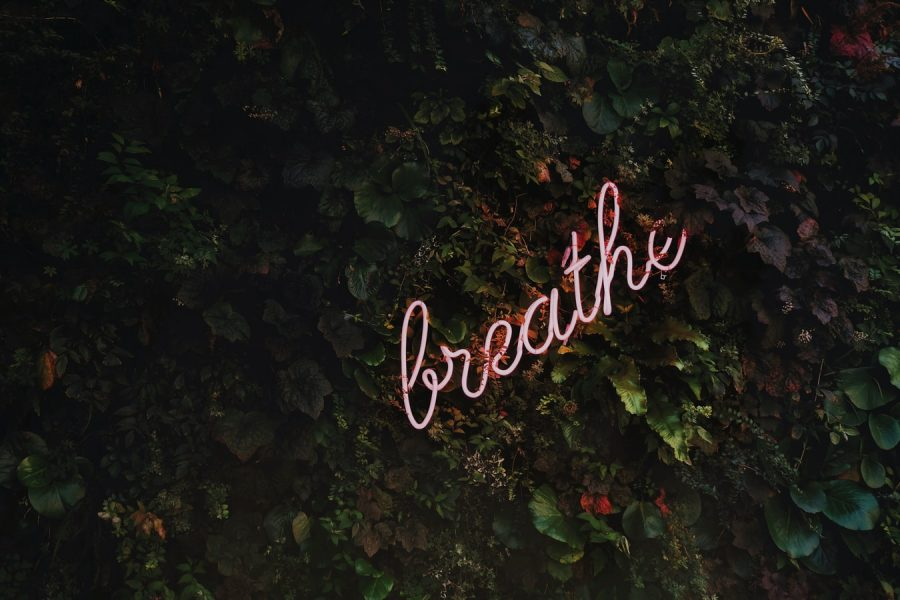 mindfulness for anxiety